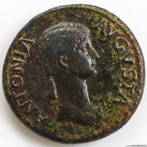 Antonia dupondius