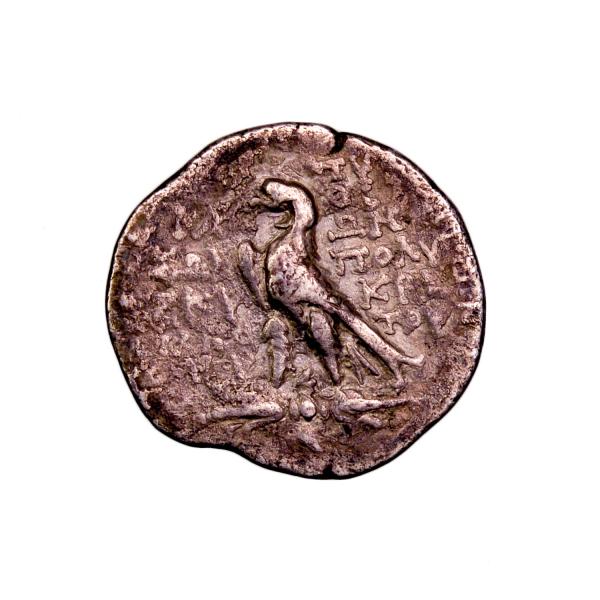 Carie Aphrodisias-Plarasa drachme